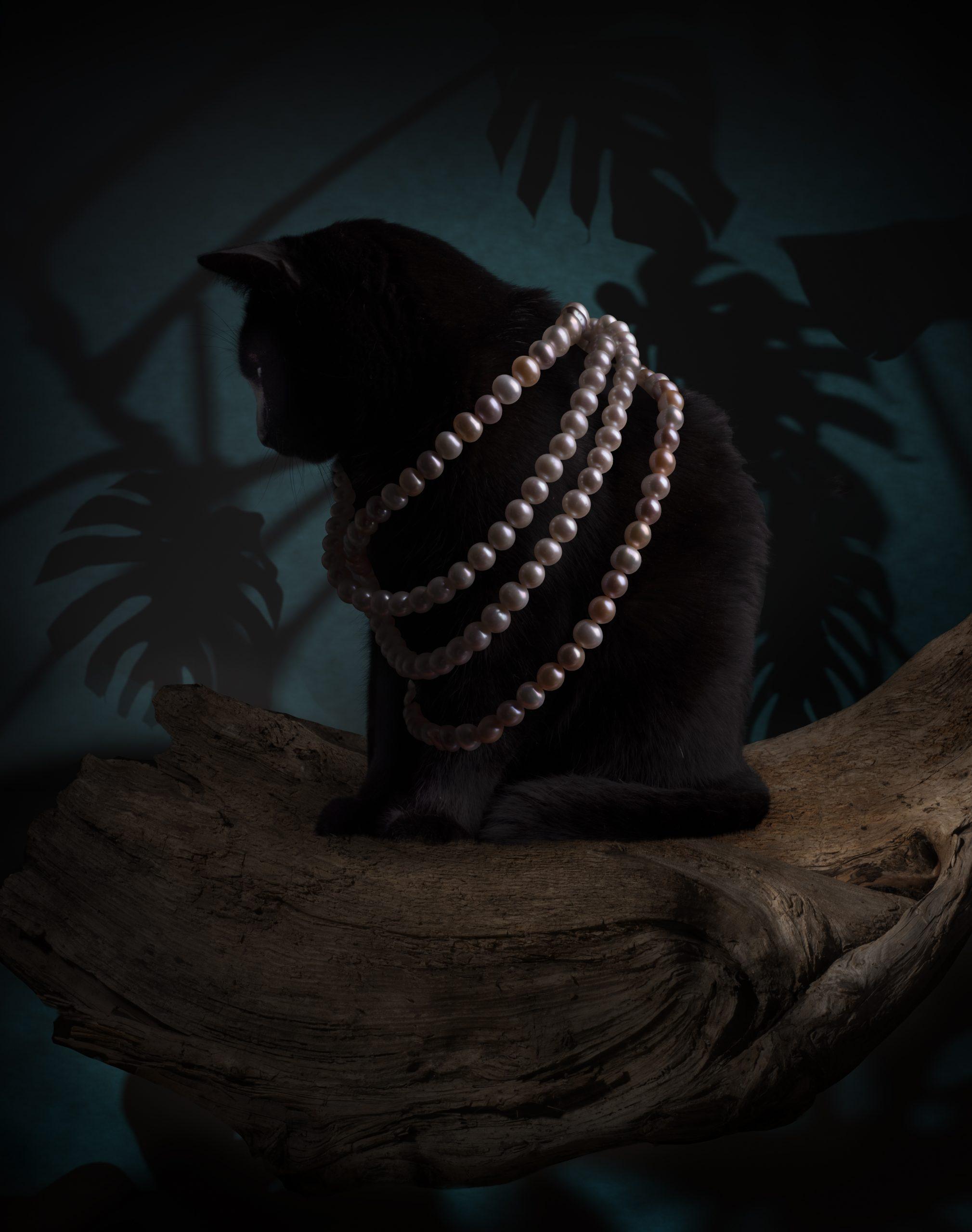 Caroline-Savoie-Joaillerie-Colliers-Perles-Chat-Noir-Photo-Art-Nouveau-Bijoux-Fait-Main-Quebec-Montreal-Handmade-Jewellery-Pearl-Necklace-Black-Cat-Picture-Joaillier-Designer